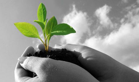 Être agri-entrepreneur