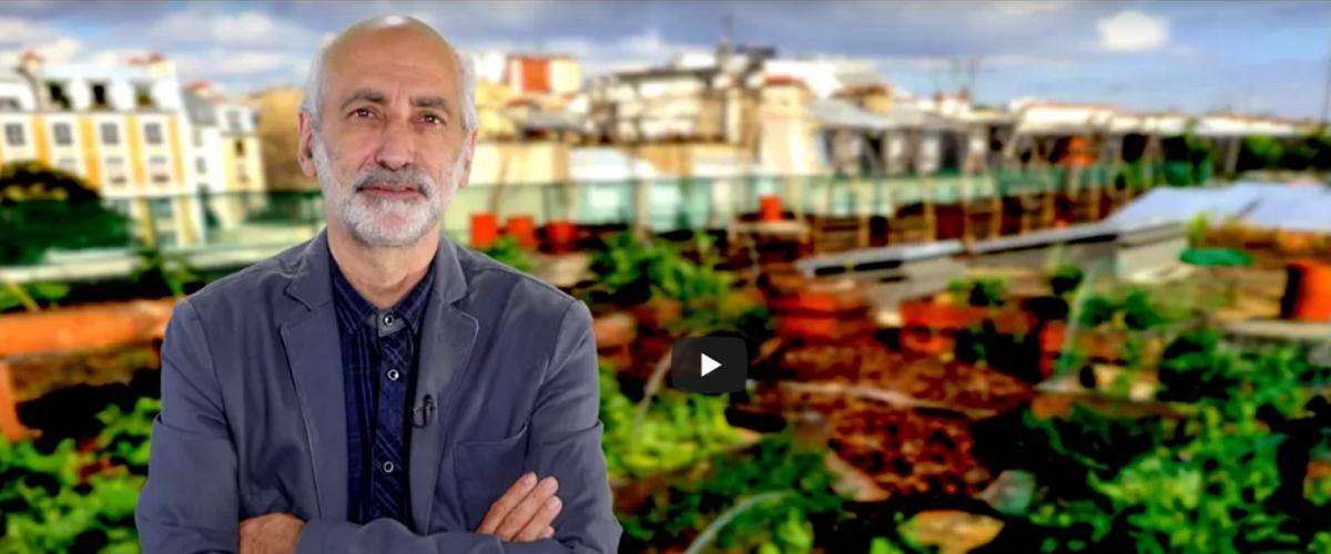 L'agriculture urbaine source de valeur ajoutée par Marc Varchavsky